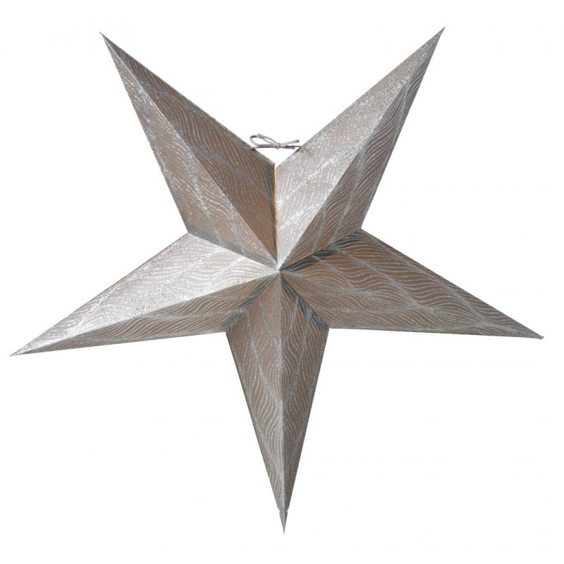 Anis julstjärna 66 silver