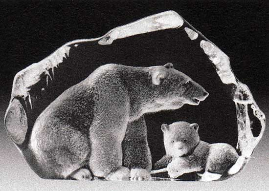 Wildlife Isbjörn med unge