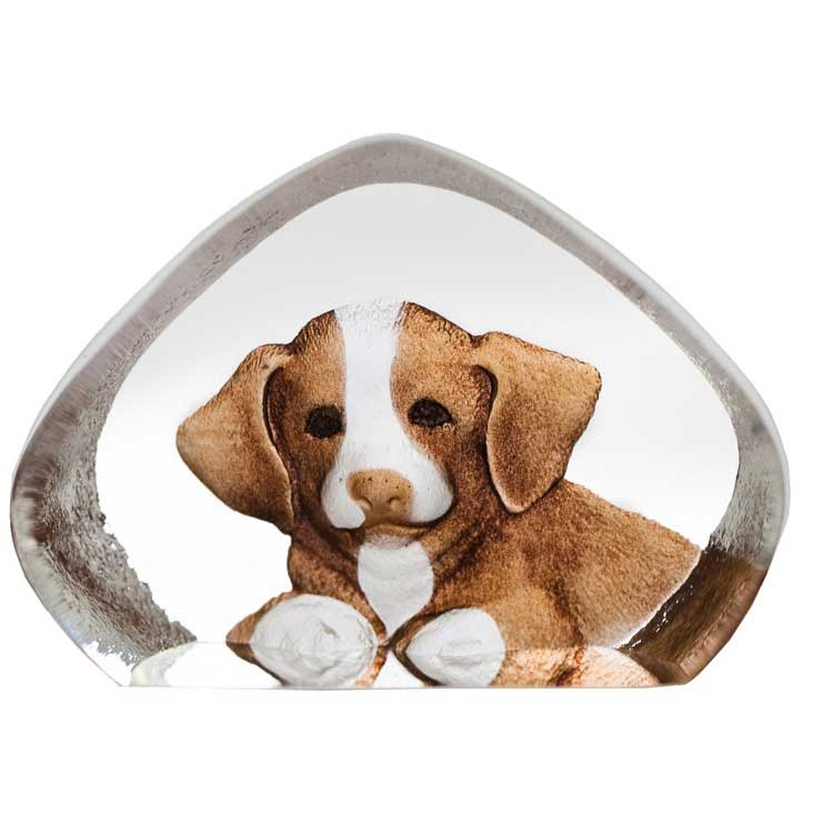 Safari Miniatyr Hund