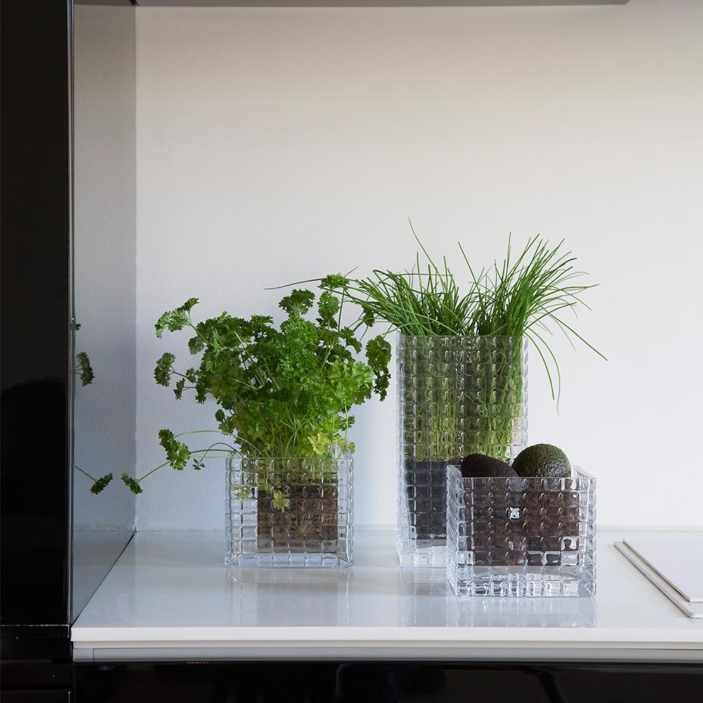 City Herb, Klar, Louise Roe
