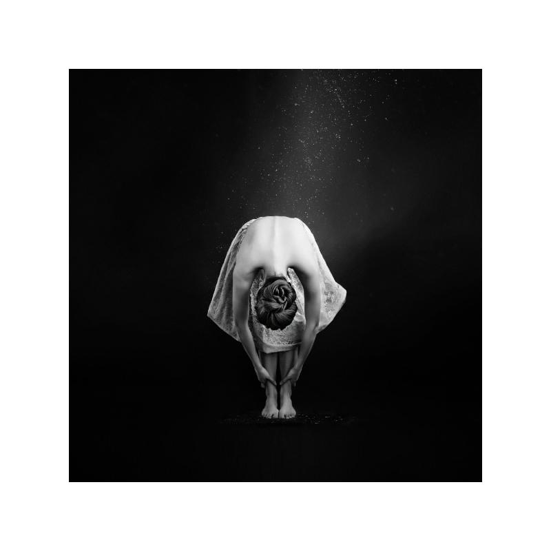 Ballerina III Poster 40×40 cm