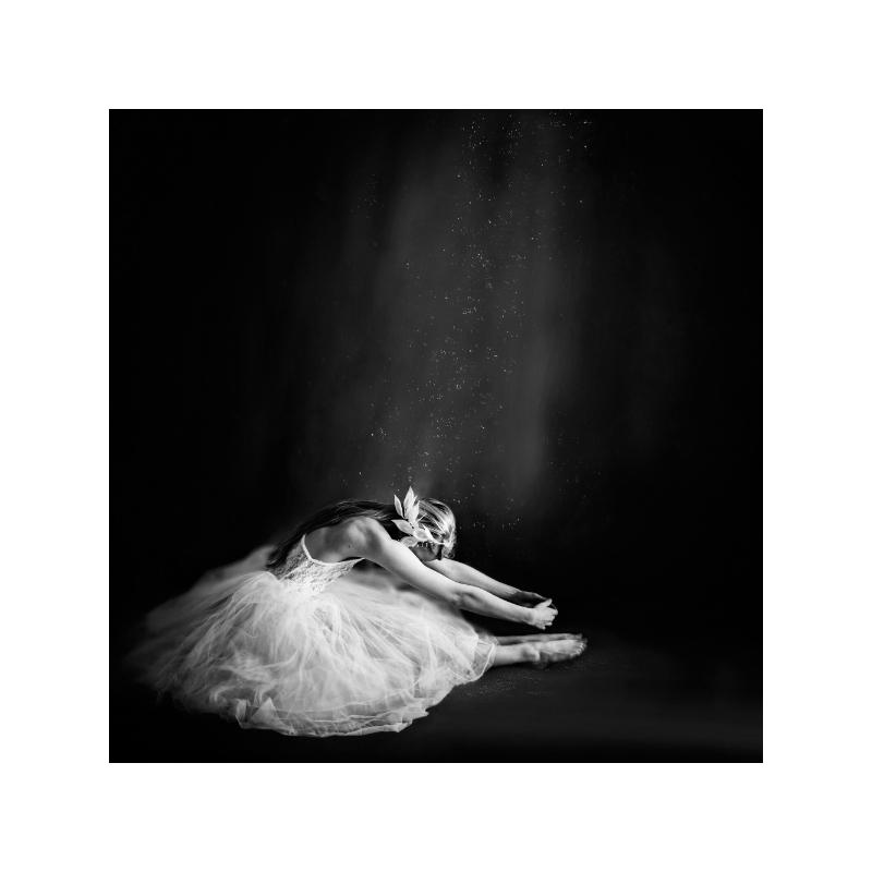 Ballerina IV Poster 40×40 cm